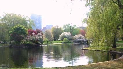Public_garden2