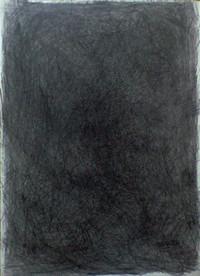 Ca391041